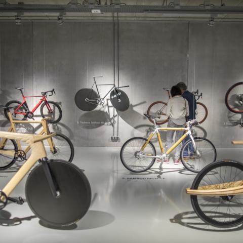 Fiets Bike Fahrrad
