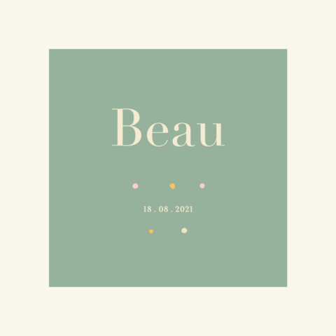Geboortekaartje Beau